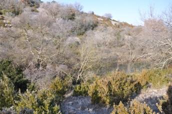 Cévennes 2008, hiver
