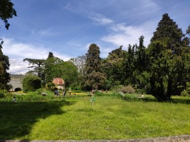 Montpellier Jardin des plantes 2