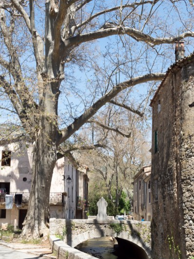 Saint Jean de Buège, entre Montpellier et Ganges