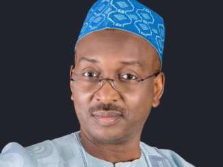 The Director-General of the All Progressives Congress (APC) Progressive Governors Forum (PGF), Salihu Moh Lukman, has chided the People's Democratic Party (PDP) and Ebun-olu Adegboruwa SAN, for reducing to politics and legality, the issues raised by President Muhammadu Buhari, on measure to tackle the spread of Coronavirus pandemic.