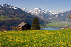 Switzerland_Valley