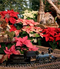 Holiday Express train on display