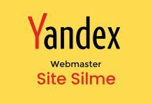 Yandex Webmaster Site Silme