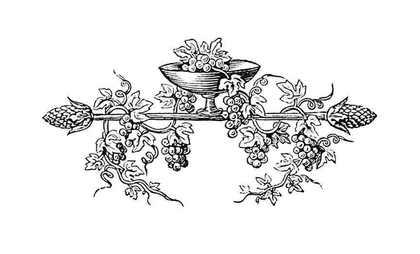 Wine-Drinking Cup with Vine and Grapes