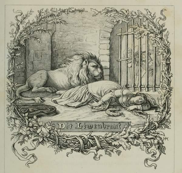 Lion Bride Book Illustrations