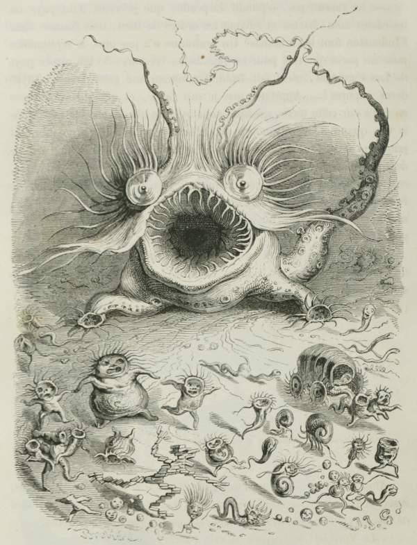 Valvos Book Illustrations