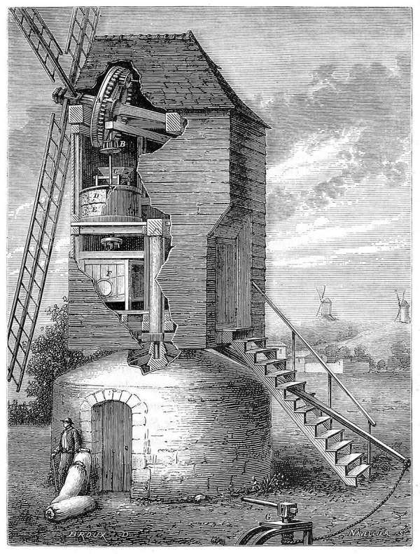 Windmill Book Illustrations
