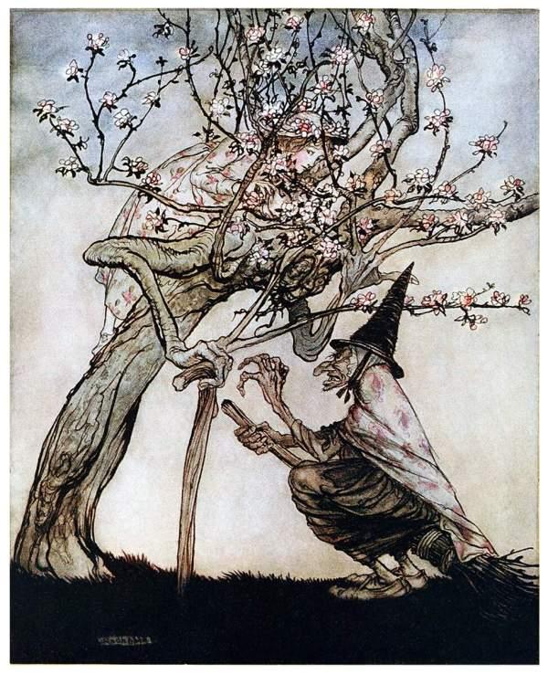 Tree Of Book Illustrations