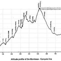Snow Leopard Anatomy Diagram Muscle Fiber Graphs Of The Steam Engine Imageresizertool Com