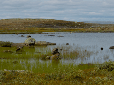 BIL-tur Sandhaug, Hardangervidda