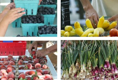 Farmers Market | Old Metairie Garden Club