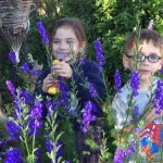 Maryann Carpenter's Beautiful Garden | Old Metairie Garden Club