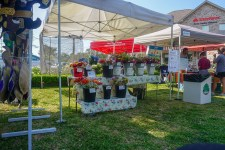 Farmers Arts Metairie Market 17 | Old Metairie Garden Club