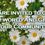 Bloom Blossom Daisies | Old Metairie Garden Club