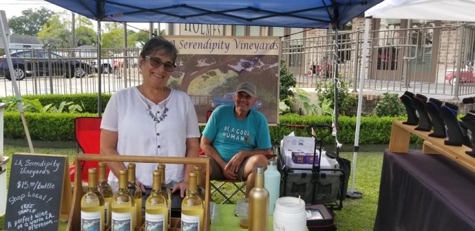 Farmers Arts Metairie Market 170919 Photo21