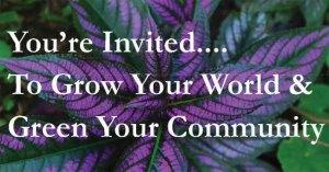 Old Metairie Garden Club General Meeting 1-28-2020