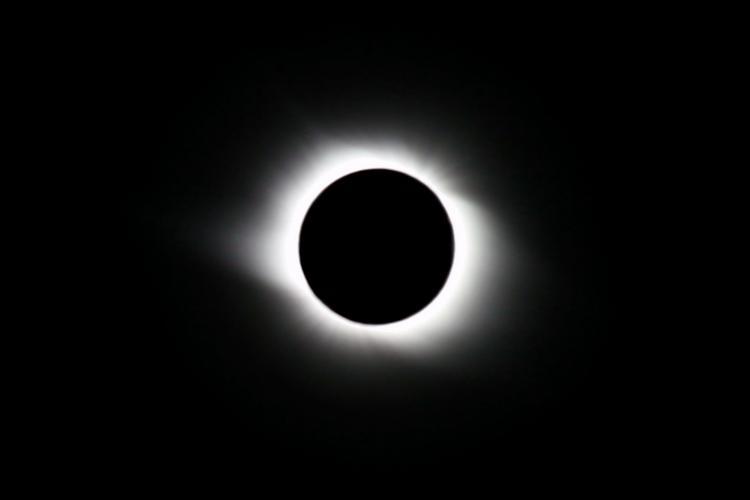 Dog shit eclipse