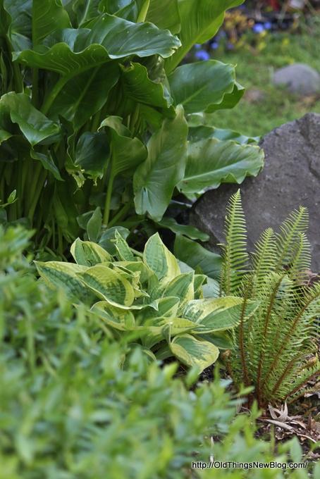 2-Spring Greens & Flowers 014