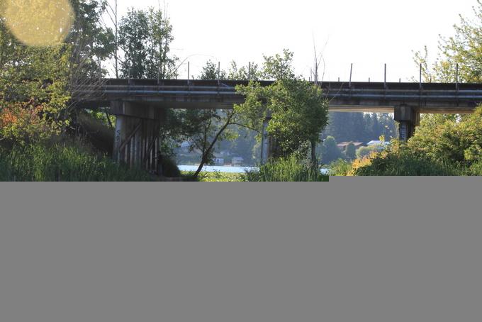 16-Pattison Lake Homes 096