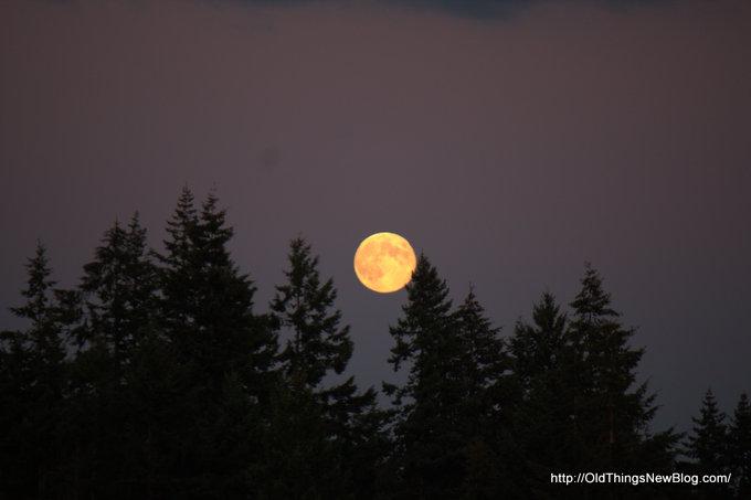 3-Moonrise over Pattison Lake 007