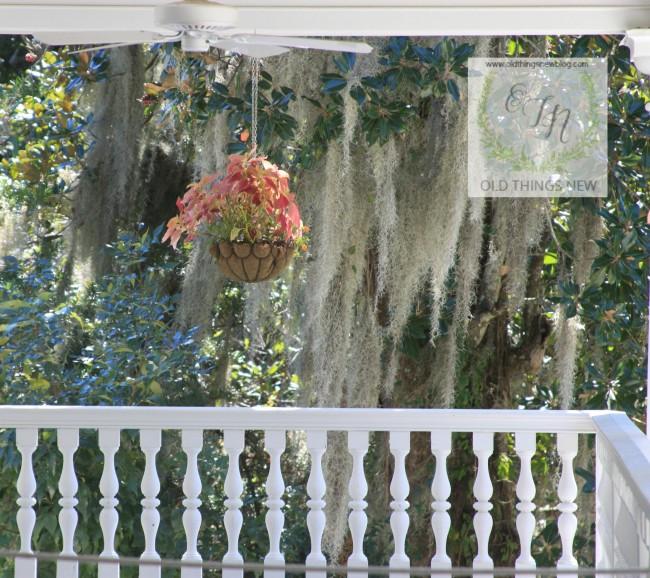 Magnolia Plantation 193