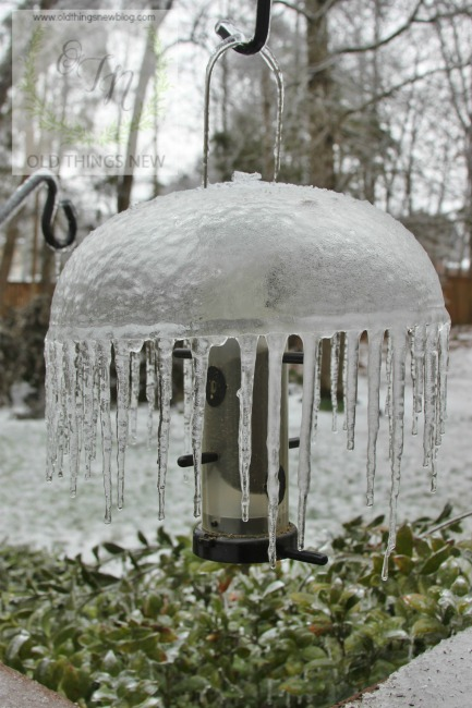 SC Ice Storm 002a