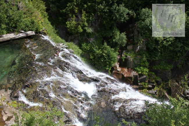 Mt Rainier 035