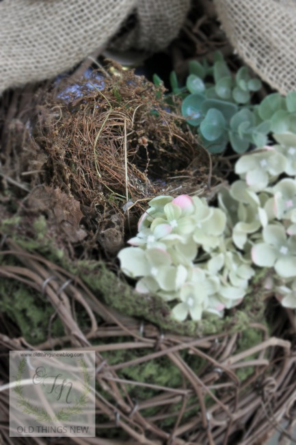 Bird's Nest 039