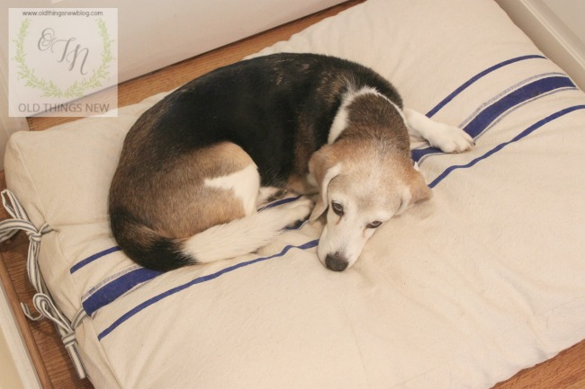 Dog bed 003a
