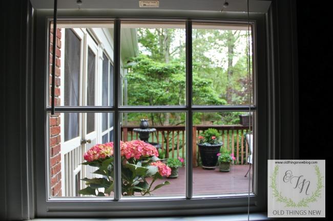 Peeking out my window 2