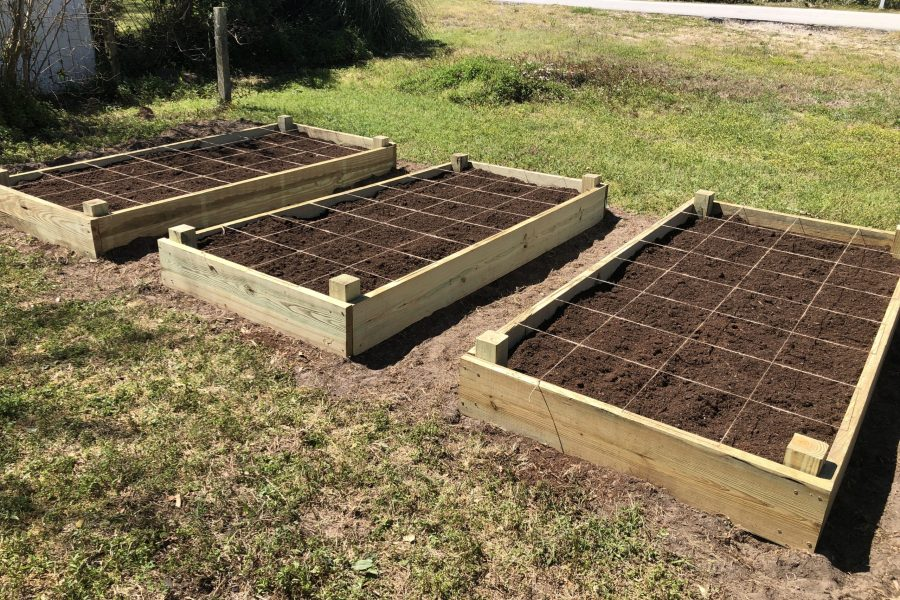 Raised beds marked off for square-foot gardening