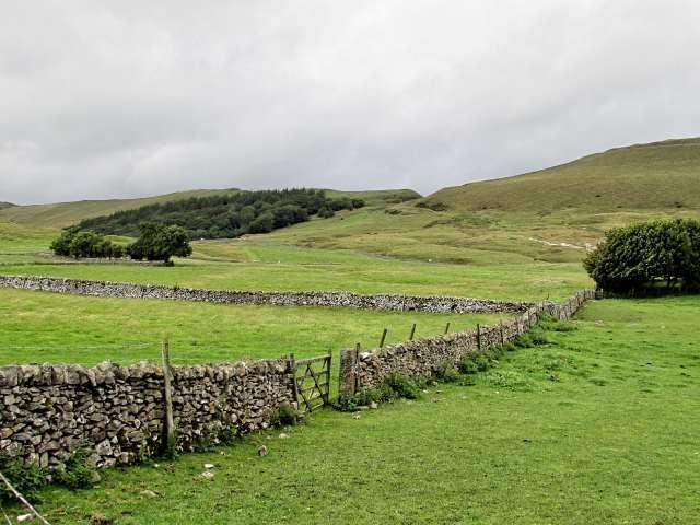 stone wall in field