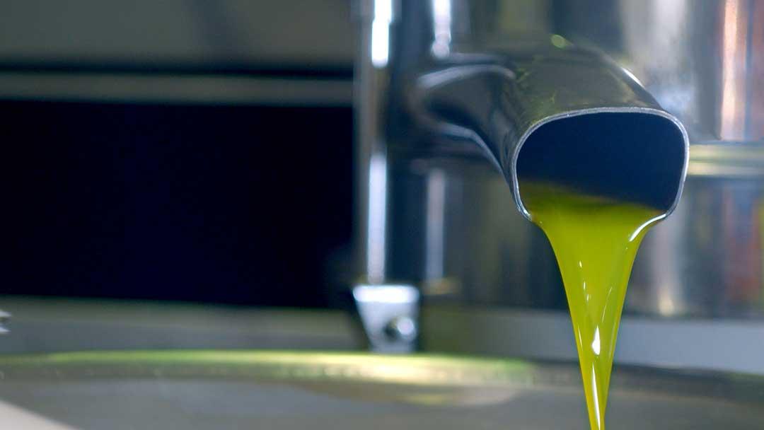 olio-extravergine-separatore