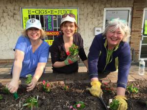 Council Members Elizabeth Dahl and Julie Deshler planting flowers for bees