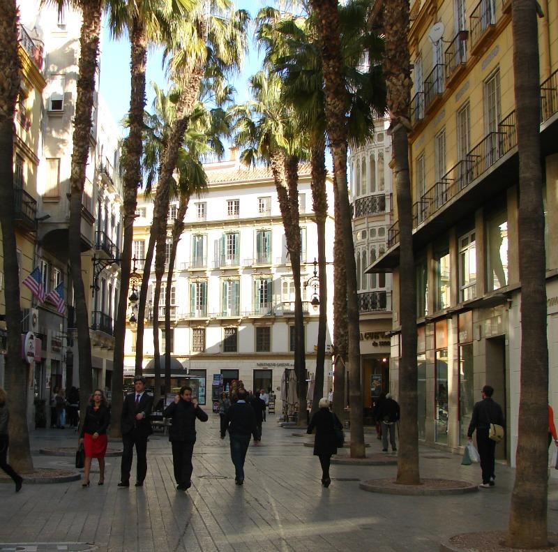 Palmen in der hübschen Fußgängerzone von Málaga