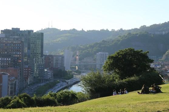 Wiese und Hochhäuser in Bilbao