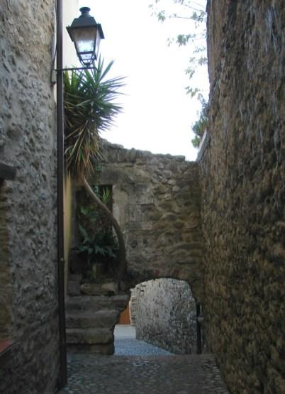 Kleine Gasse mit Palme in Besalù