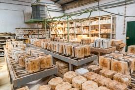 In der Keramikfabrik Azoren