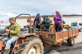 Traktor mit Anhänger Parkplatz Teeplantage Cha Gorreana Azoren