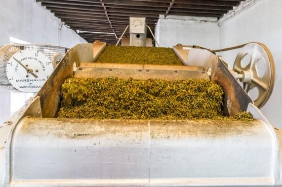 Maschine Detail Teefabrik Azoren Sao Miguel