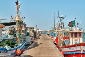 Bunte Fischerboote Algarve