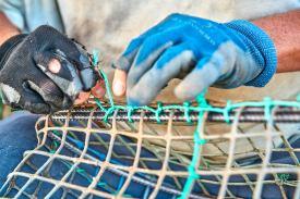 Fischer repariert Reuse an der Algarve