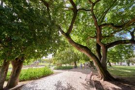 Park in Belém
