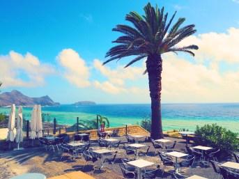 Strand Café Palme Insel Urlaub