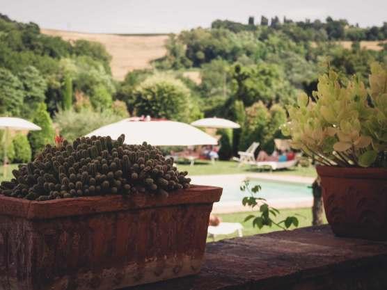 Hotelgarten mit Pool und Sonnenliegen in Toskana