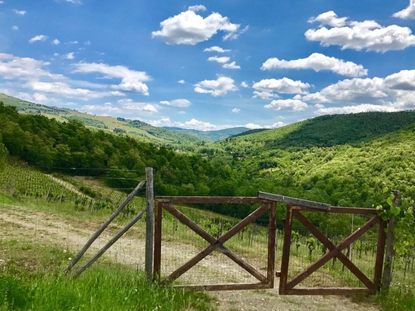 Grüne Hügel Toskana