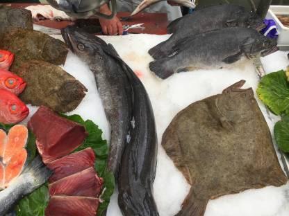 Galicien Fisch Markt