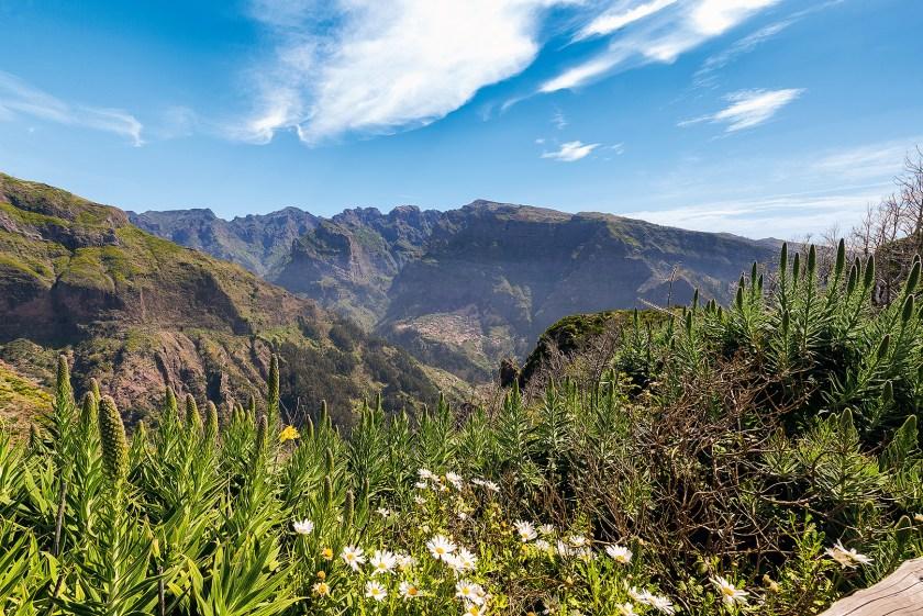 Madeira Landschaft bei Câmara de Lobos