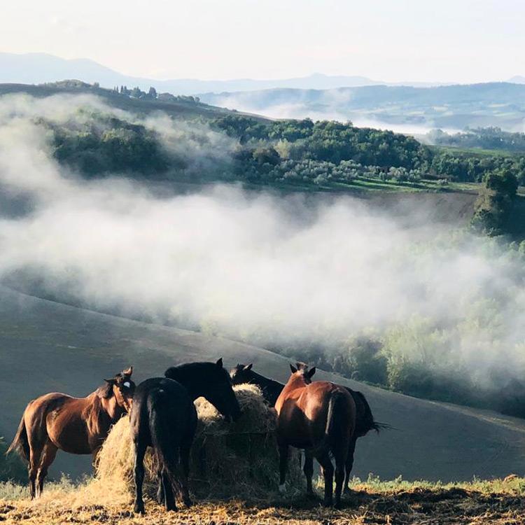 Italien Morgenstimmung Orica Tal
