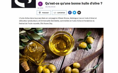 Qu'est-ce qu'une bonne huile d'olive ?
